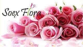 Soex_Flora