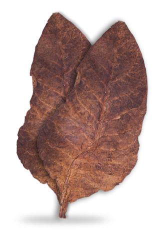 sopariwala_exports_black_chopadia_tobacco_ibc_ll